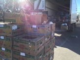 boxes_6558