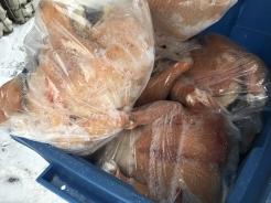 Chickens_0601 (1)