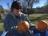 pumpkins_6578